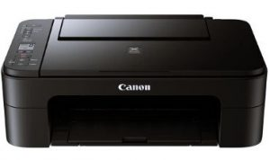 Canon PIXMA Printing Only Black Ink Cartridges